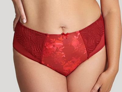 Sculptresse by Panache Arianna Full Brief Deep Red  38-50 10272-RED