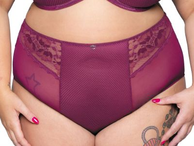 Delightfull High Waist Brief Plum