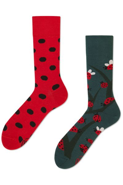 Many Mornings  Dots and Bugs Regular Socks 1 pair  35-38, 39-42, 43-46 R4