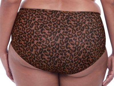 Goddess Kayla Brief Dark Leopard  M-4XL GD6168-DLD