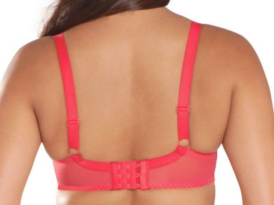 Lifestyle Plunge Bra Red