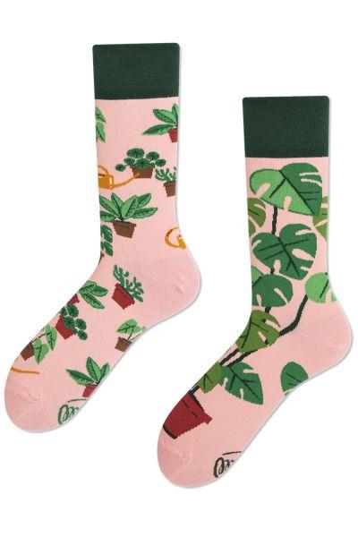 Many Mornings  Plant Lover Regular Socks 1 pair  35-38, 39-42, 43-46 R76