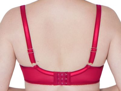 Surrender Plunge Bra Red