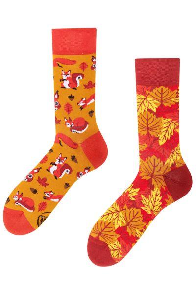 Many Mornings  The Squirrel Regular Socks 1 pair  35-38, 39-42, 43-46 R119